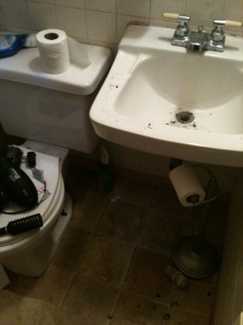 The Poop Bathroom, in all it's glory.  Ashes, bird poop, an abundance of toilet paper...